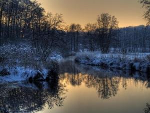 Foto-Neetze